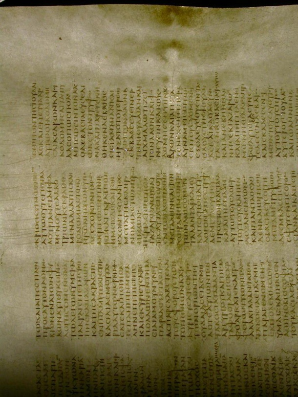 Animal Skin parchment. You can see skeletal outlines on the page. http://codexsinaiticus.org/de/img/ParchFeatSkeletal.jpg